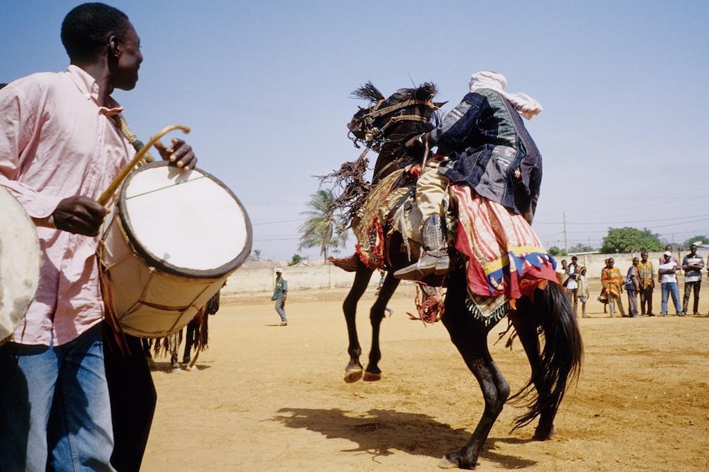 Les cavaliers font danser leurs chevaux aux rythme des tambours. Le cheval descend d'une courbette.