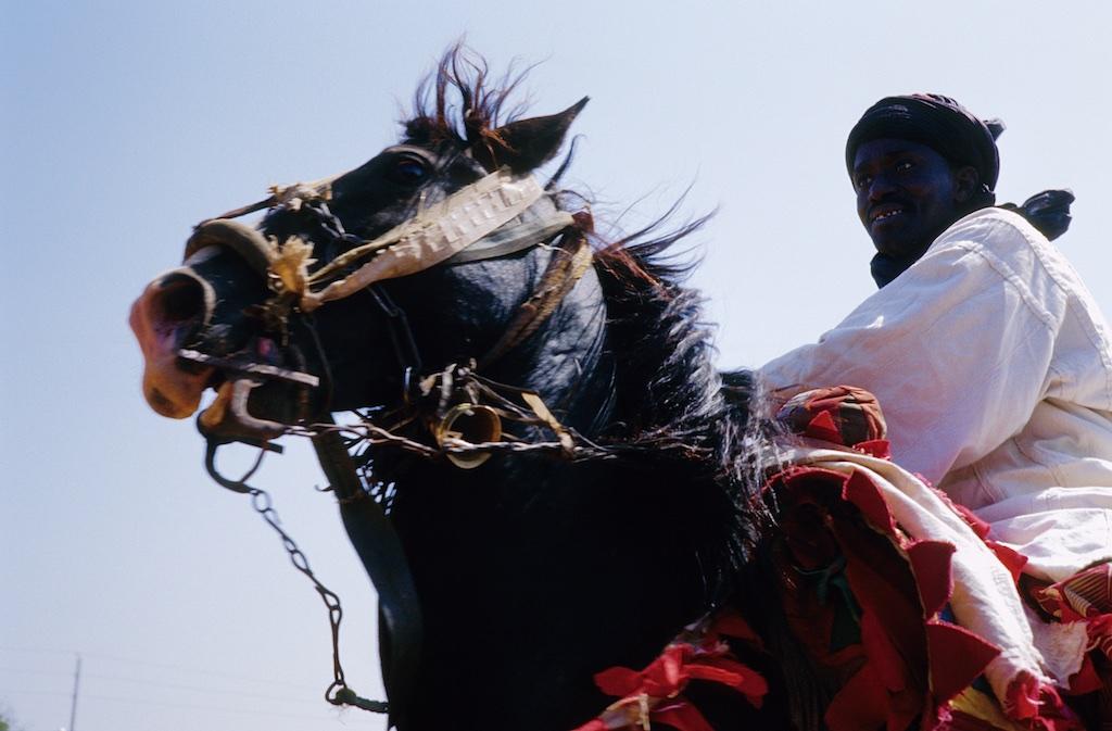 Bazénon et son cheval. Hackamore artisanal avec un début des rennes en métal.